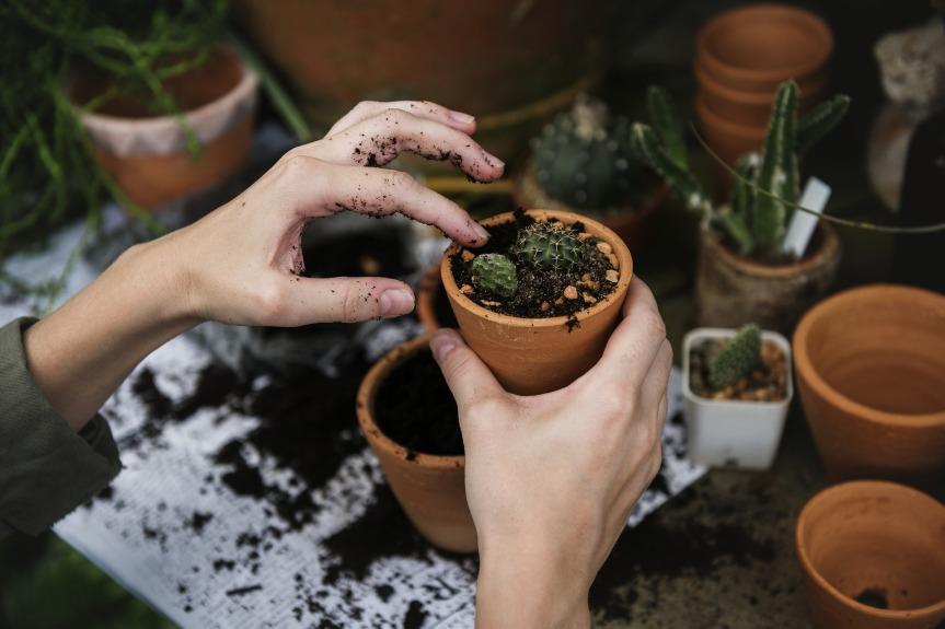 Prochainement dans le Kiosque … Découvrir le jardinageplaisir