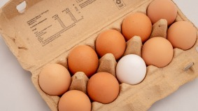 eggs-3446869_1920