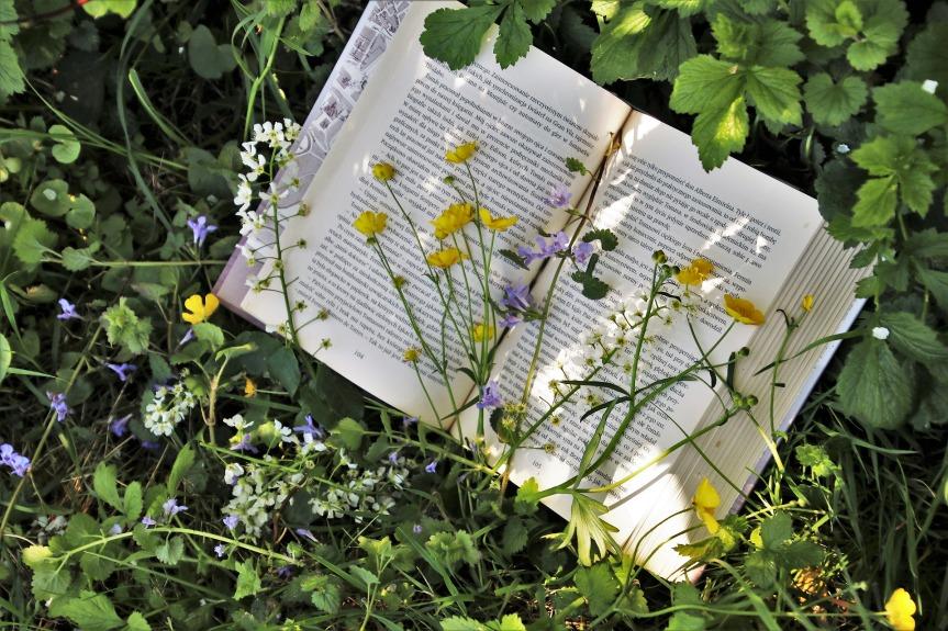 Pour aller plus loin … les légumes, le jardin et le potager encarré