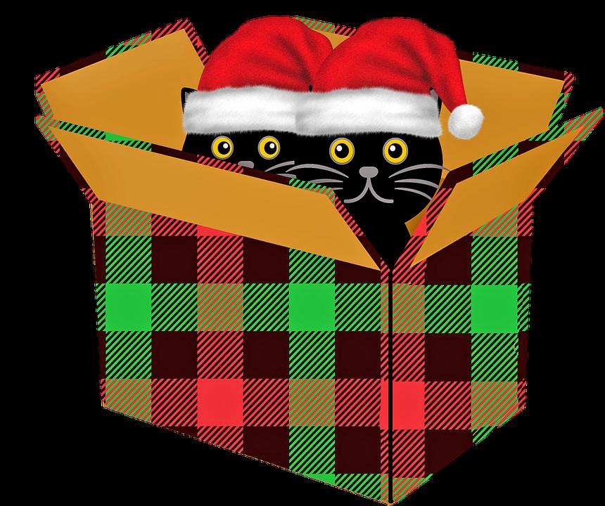 Petits cadeaux de Noël à fairesoi-même.