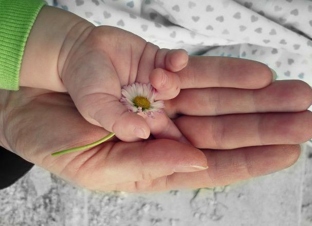 hands-105455_1280